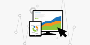 Sales Maximization by Dynamic Pricing and Price Monitoring