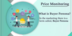 Monitoring Buyer Persona for Online Sales and Price Monitoring