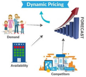 Dynamic Pricing Strategies